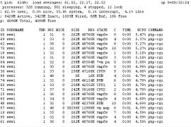 进程php-cgi.exe,top显示进程数接近3000了,freebsd服务器严重影响了网站的访问速度已解决